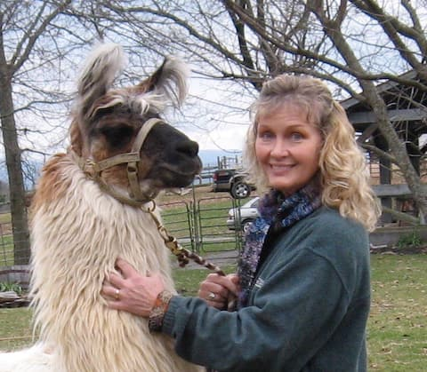 """The """"Llama Lodge"""" on a Working Llama Farm"""