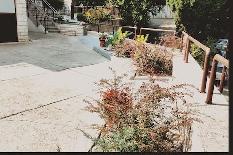 Modern Charming House + Beautiful Garden + Parking