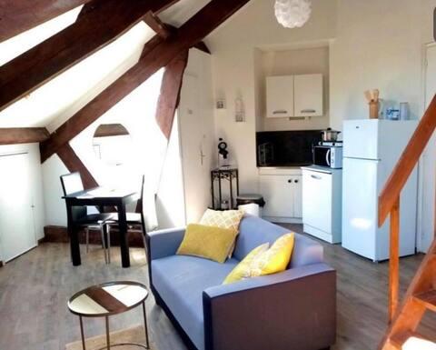 Très bel appartement cosy au cœur de Vittel