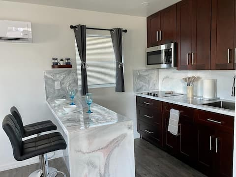Fully Remodeled Luxurious Studio Apartment