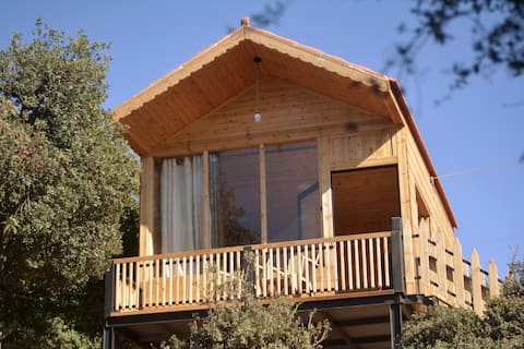 Live amid nature in the most beautiful Ajloun Hut