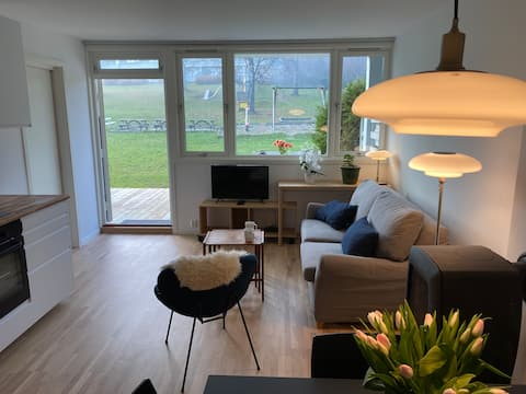 Koselig arealeffektiv leilighet med stor terrasse