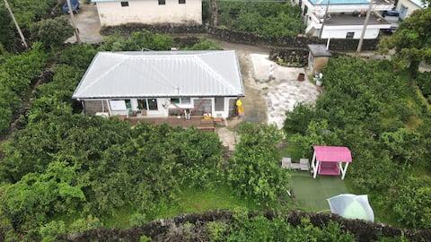 서귀포 남원 귤밭 농가 주택 돌담 집 한달 살이