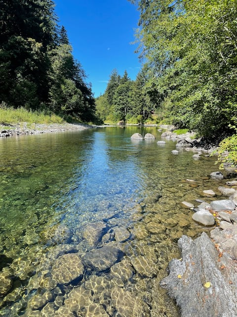 Misty Morrow 🌲 Sol Duc River 🎣 Lake Crescent