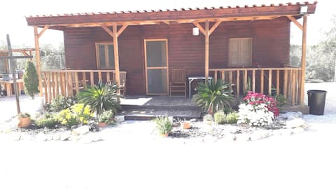 Delightful one bedroom wooden cabin with patio