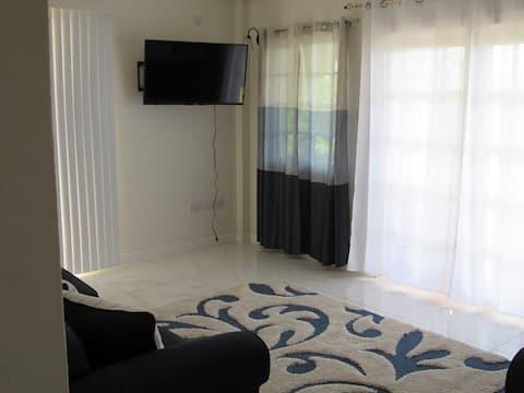 Beautiful Modern Apartment 2-bed/2-bath (1L)