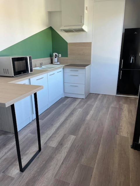 Grand appartement lumineux T2
