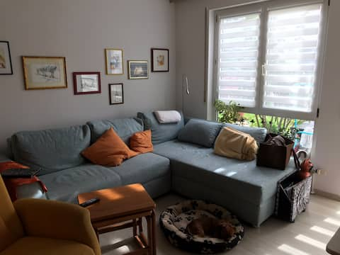 For singles: nice room with terrace, central