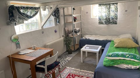 Room in house, parking, close to bus and Astra.