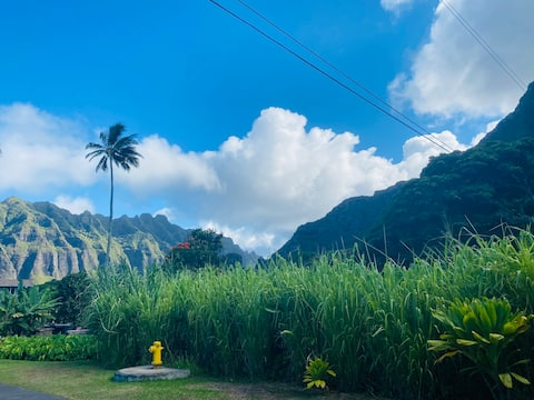 Authentic Hawaii: nestled between beach & mtns