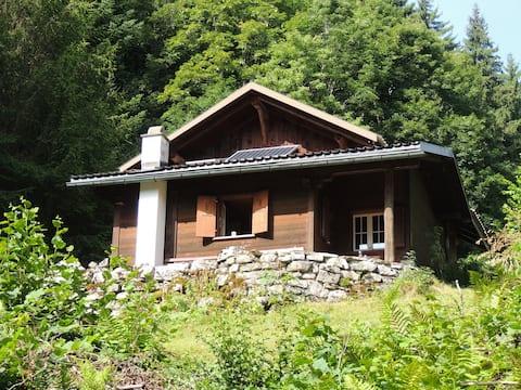 Mountainhut, Alphütte