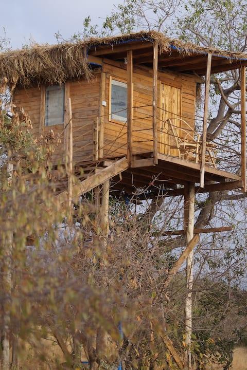 Hakuna Matata Safari lodge and Campsite