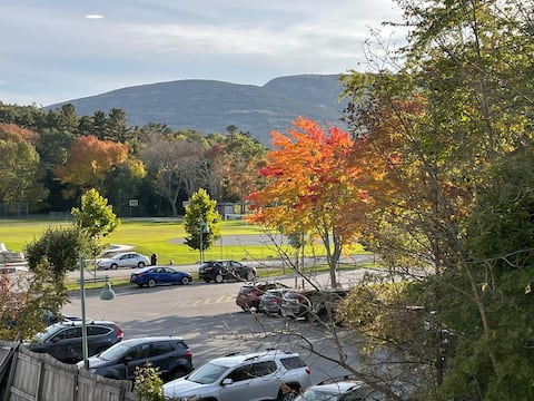 NEW- Champlain Overlook in the Heart of Bar Harbor