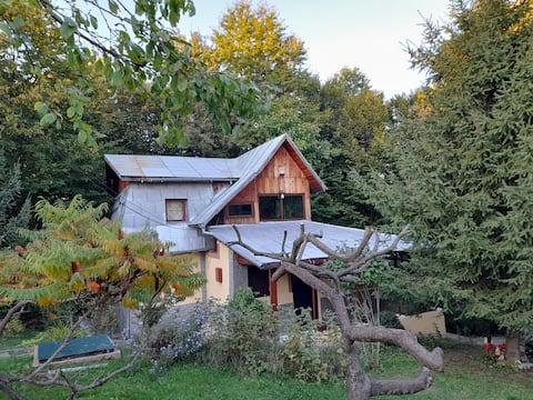 Cabana din Padurea Valeni
