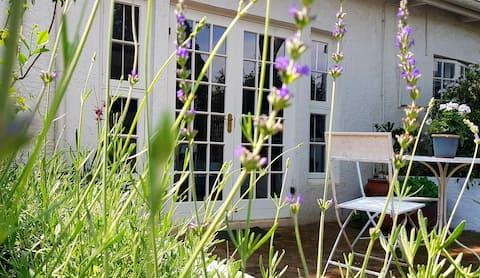 Lavender studio at 6 on 6th