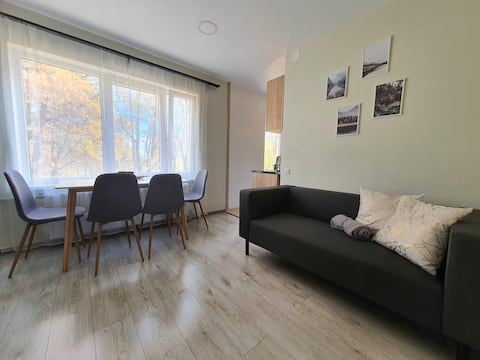 Renovated 2 beds apartment with parking, near lake