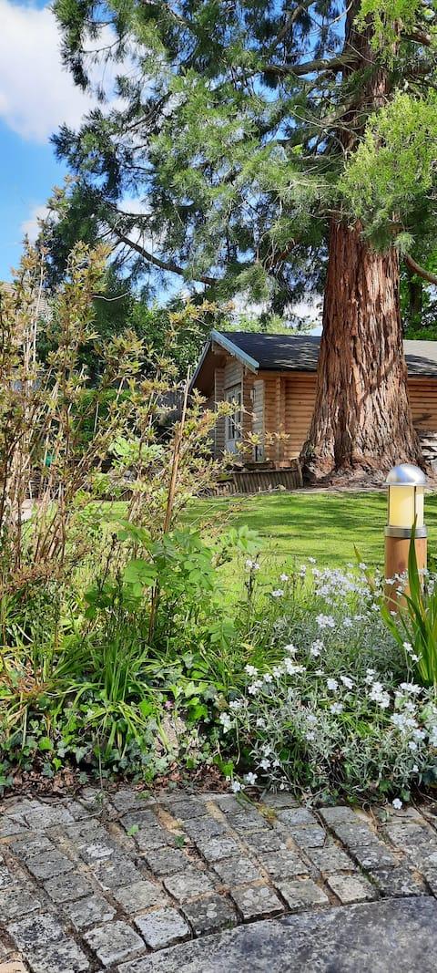 Redwood Lodge: A hidden retreat