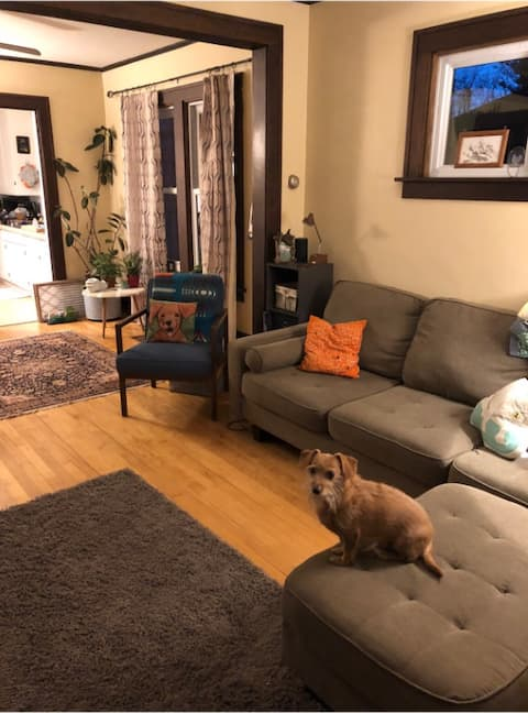Pet friendly 2-bed in Easthill close to downtown