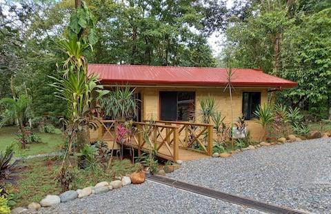 Cabinas Costa Tropicana: Cabina Oropendula