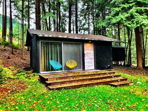 Cozy guest house in the forest
