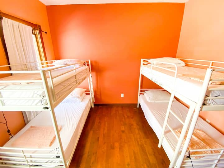 1 Bed in a 4 Bed Female Dorm at Downtown Hostel
