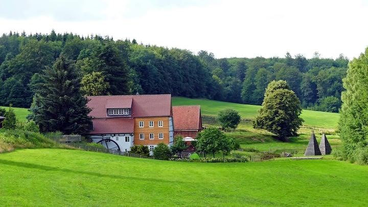 Historic romantic Mill