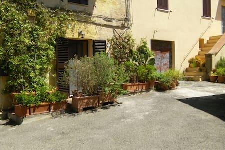 Questa foto rappresenta l'ingresso della casa, circondato da piante.