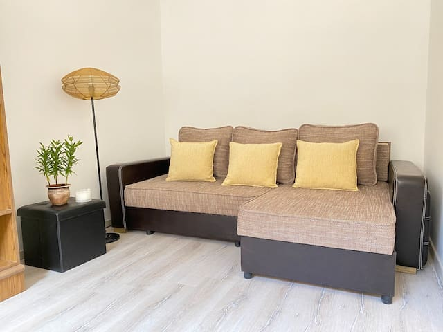 room with pull out sofa (2people), apartment I.