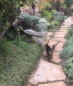 We have solar lights that line the flagstone walkway from your private driveway to the porch.  From walkway onto porch is a seven inch step and from the porch into your studio there are two steps Both small steps 5 inches.