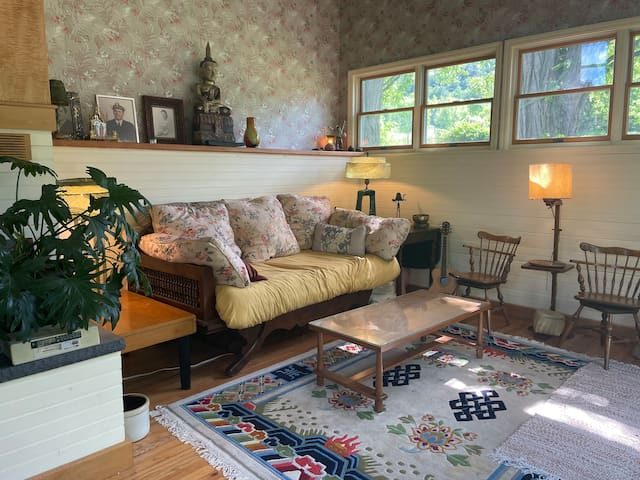 Downstairs bedroom/ den with wall of sliding glass doors and wood stove