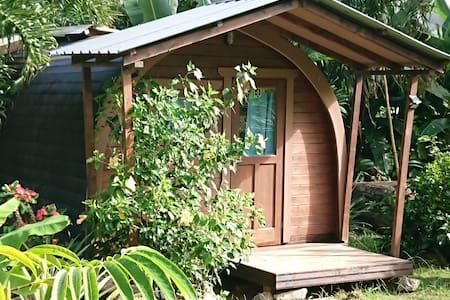 A PEACE IN PARADISE (Bird of paradise Log cabana)