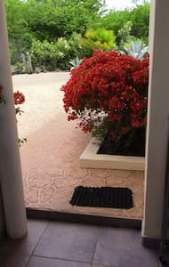 The entrance between bungalow and the big planter is 94 cm wide and has a step of 10cm.