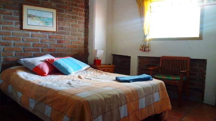 Octopus's Garden Sunshine bedroom