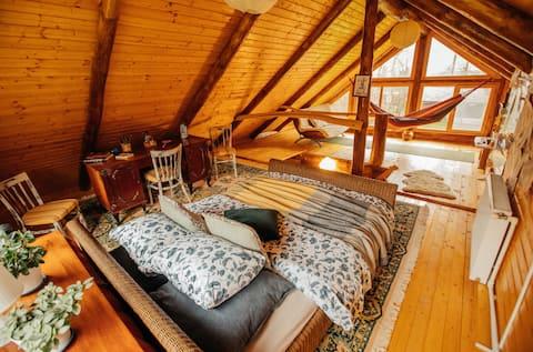 Cabana de troncos de madera Transylvania