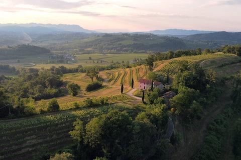 Increíble vista entre viñedos