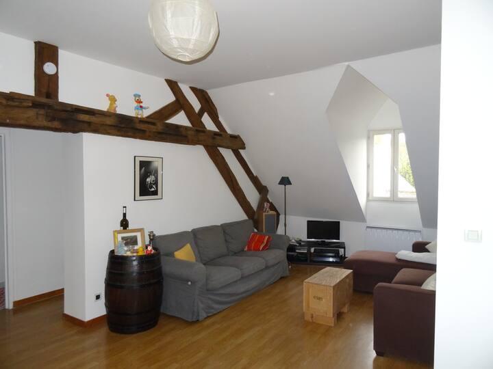 Appartement type F3 en hyper-centre