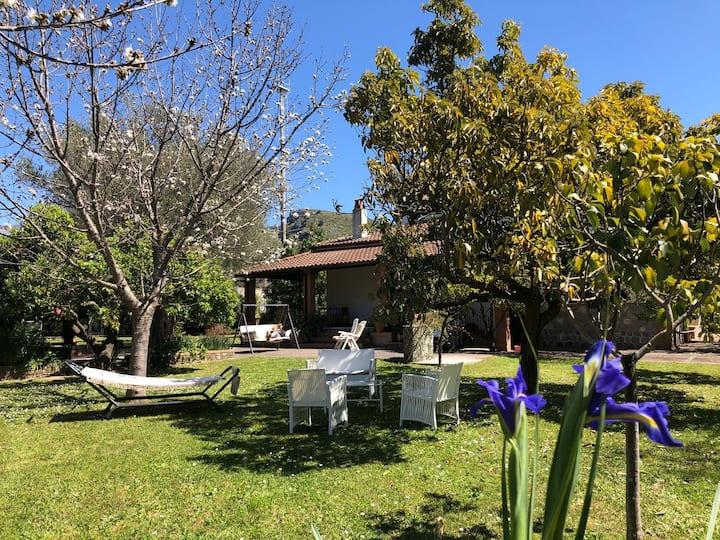 Villa  in Cilento a Villammare