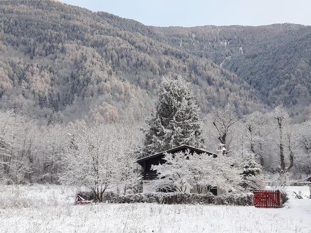 Chalet studio apartment with garden in Valtellina