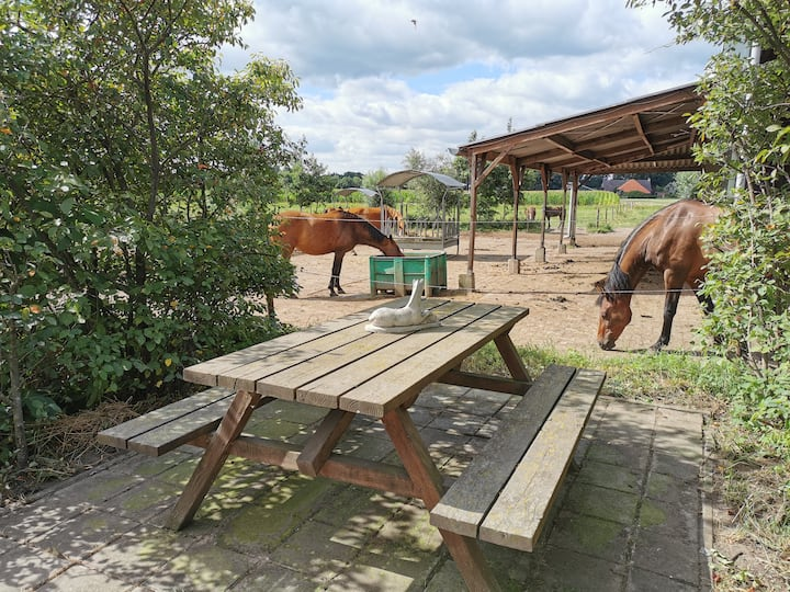 Landelijk logies op Paardenrusthuis
