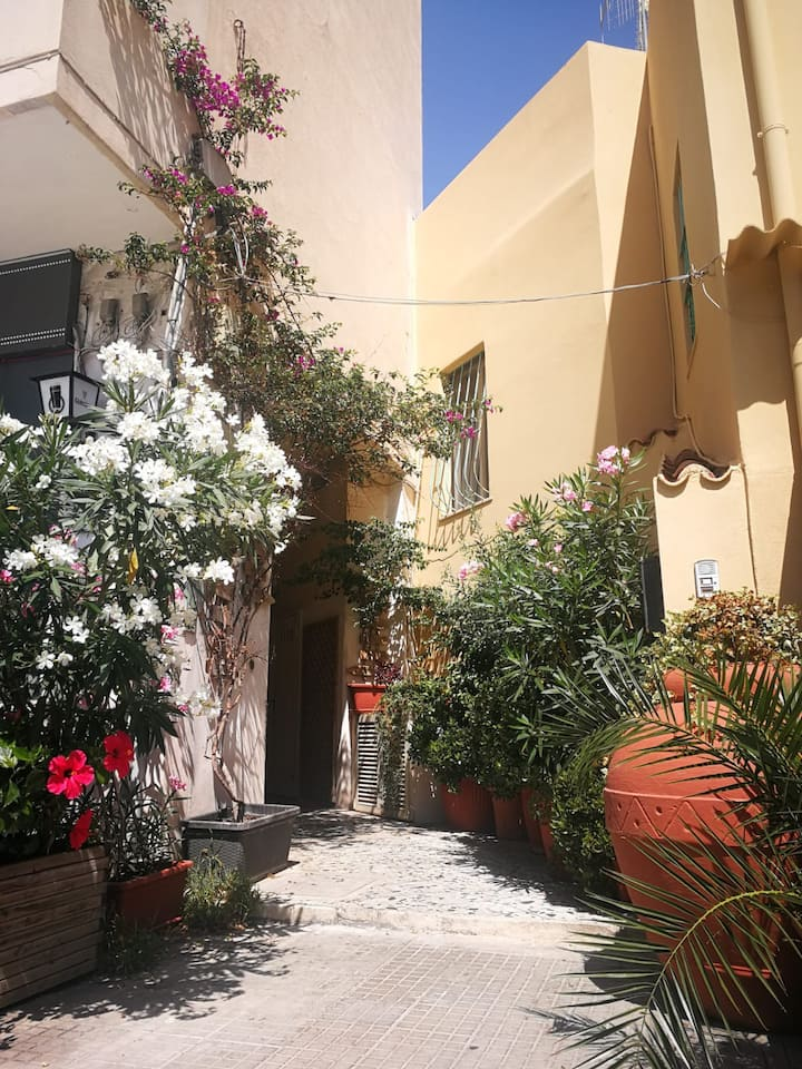 Studio, 4 heart in Alguer