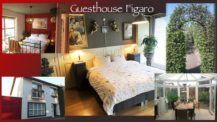 Guesthouse Figaro