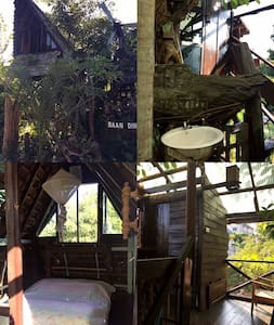 Tree house for stay with natural.