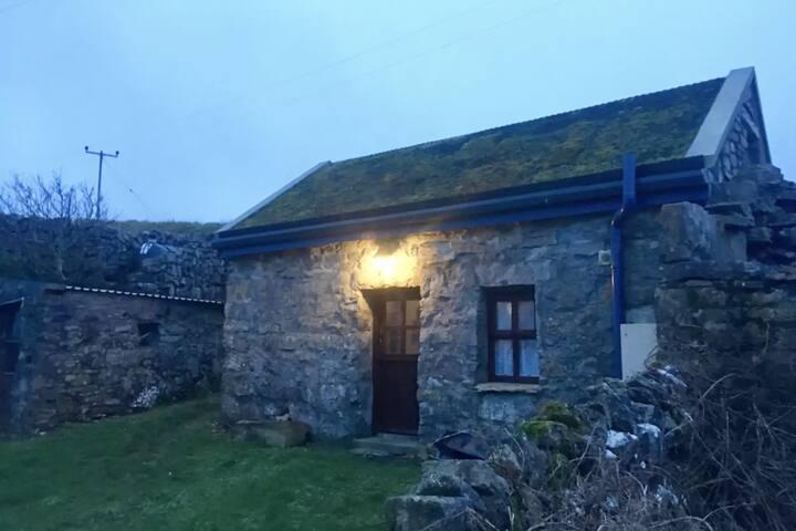 Aran Island studio (with wildflower roof)
