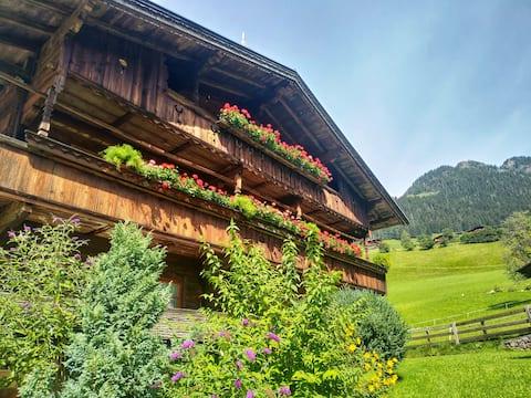 Hüttenappartment Almrausch mit Blick auf die Berge