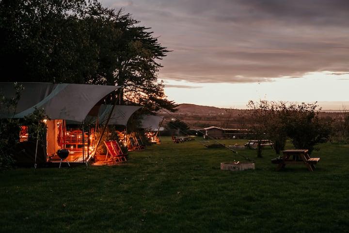 All 5 Safari Tents at Tapnell Farm