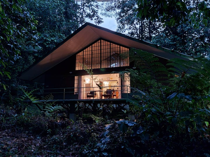 Jungle Cottage - Guapiles