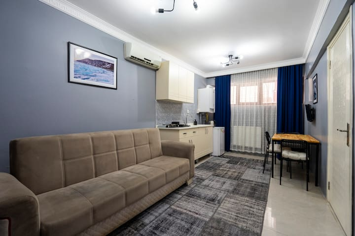 Economy Family Room- Basement Floor