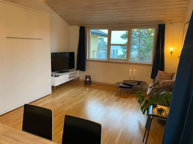 Nice studio on an island  5 km  for Oslo Downtown