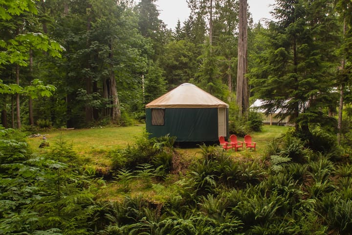 Large, secluded yurt on the edge of ravine.