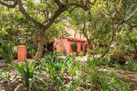 Charming apartment into an avocado garden.
